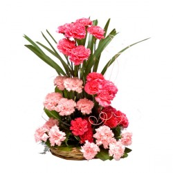 Shades of Pink carnations