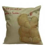 aquarius-gift-idea-together-forever-cushion