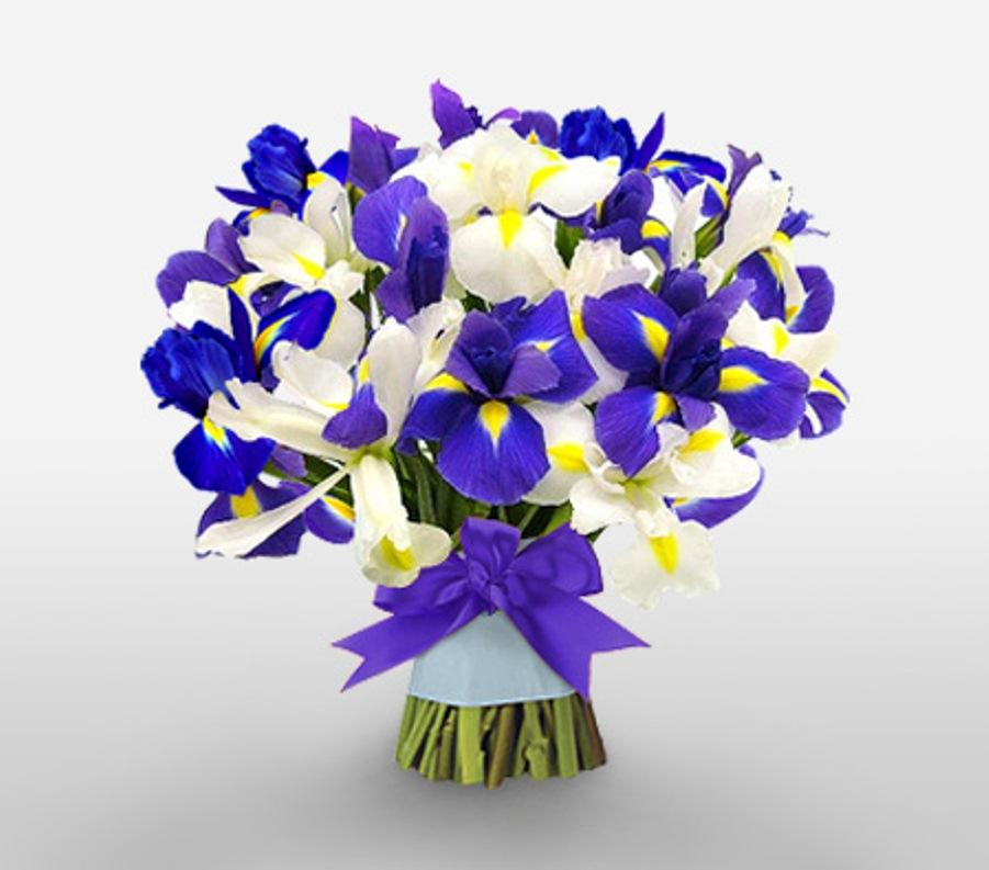 mothers day-gift-flowers-irises